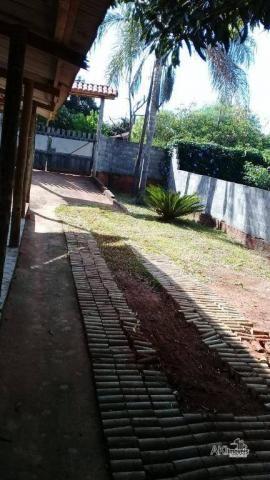 Chácara - São João - Flórida/PR - Foto 9