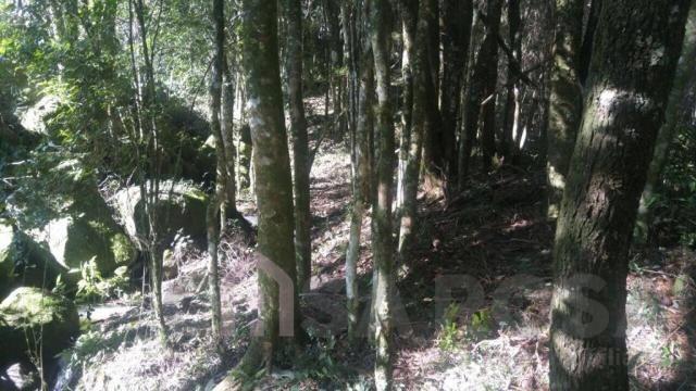 Terreno à venda em Monte bérico, Caxias do sul cod:2066 - Foto 5