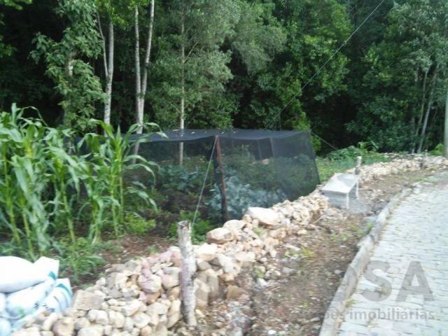 Terreno à venda em Monte bérico, Caxias do sul cod:2066 - Foto 3