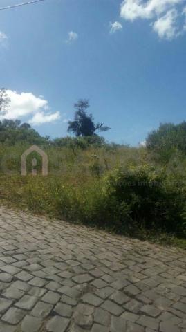 Terreno à venda em Nossa senhora das graças, Caxias do sul cod:1047 - Foto 2