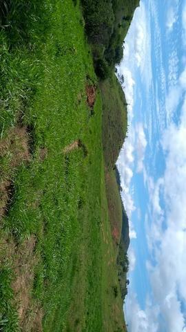 Área pra lavoura/pasto a 7 km do centro de bom Jesus