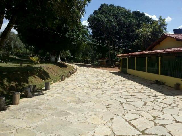 Urgente 20 hectares planalmira 35 km Anápolis. - Foto 14