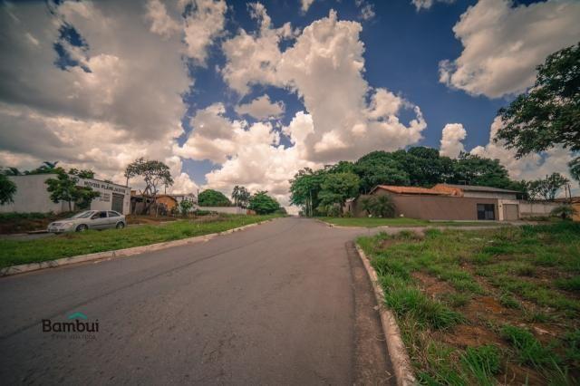 Terreno para alugar em Cardoso, Aparecida de goiânia cod:60208072 - Foto 5
