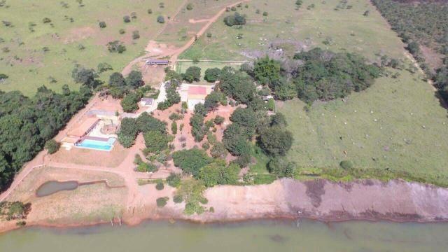 Urgente 20 hectares planalmira 35 km Anápolis. - Foto 12