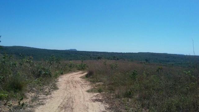 Fazenda 454 ha em Guiratinga-MT