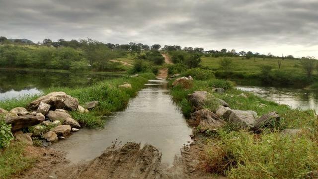 Ótima fazenda pitombeira em vertentes, com 161 hectares - Foto 4