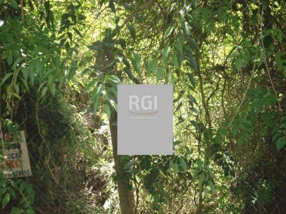 Terreno à venda em Três figueiras, Porto alegre cod:LI50877747 - Foto 6
