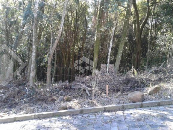 Terreno à venda em Zona industrial, Garibaldi cod:9908742 - Foto 2