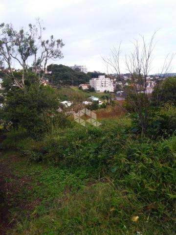 Terreno à venda em São francisco, Garibaldi cod:9908783 - Foto 5