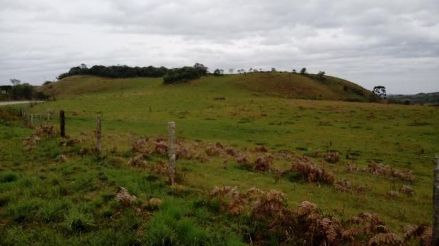 Terreno à venda em Interior, Caxias do sul cod:1849 - Foto 3