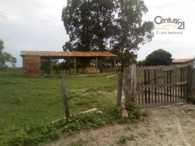 754 há em Barras Piauí - Foto 7
