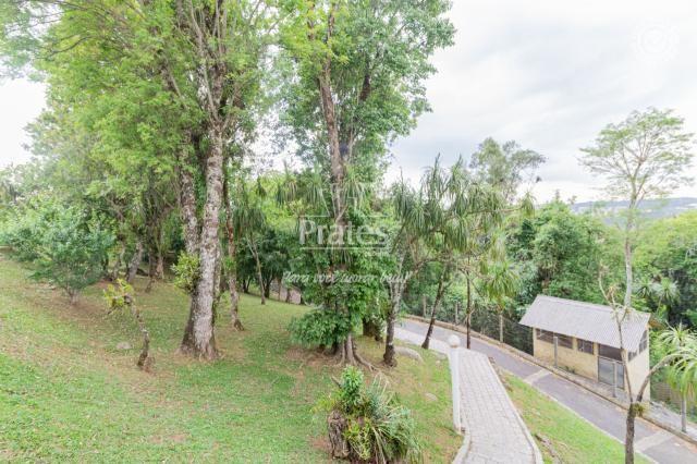 Chácara para alugar em Passaúna, Campo magro cod:8140 - Foto 15