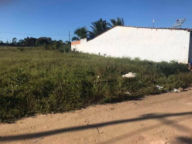 Terreno Em Mamanguape 300 metros²