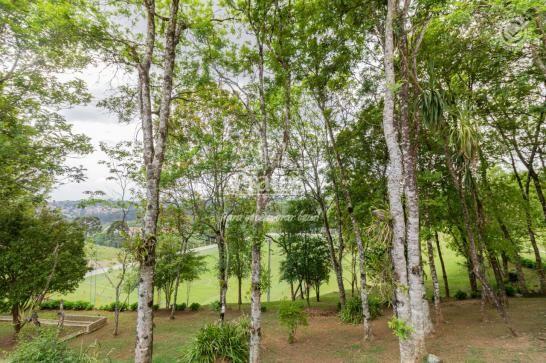 Chácara para alugar em Passaúna, Campo magro cod:8140 - Foto 11