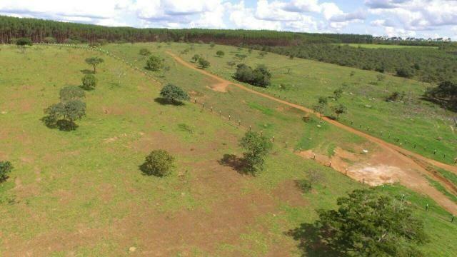 Urgente 20 hectares planalmira 35 km Anápolis. - Foto 7