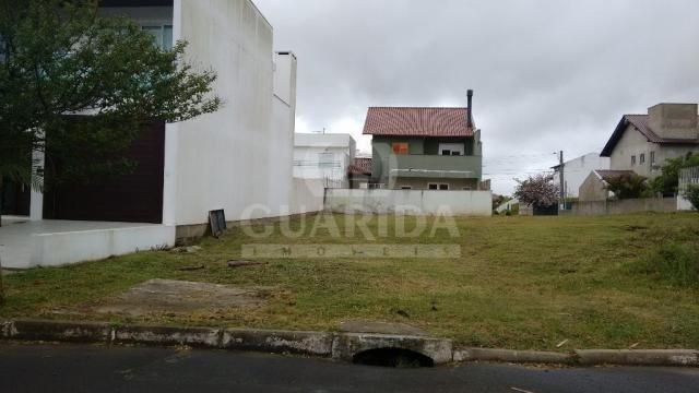 Terreno à venda em Protásio alves, Porto alegre cod:168475