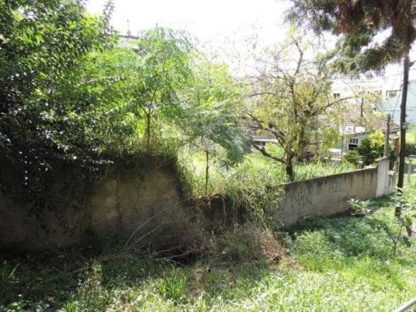 Terreno à venda em Chácara das pedras, Porto alegre cod:TE1389 - Foto 3