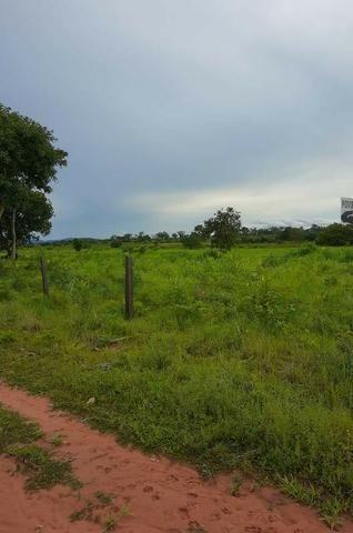 2.200 alqs Solo Argiloso Região De Chuva Palmeirópolis TO - Foto 20