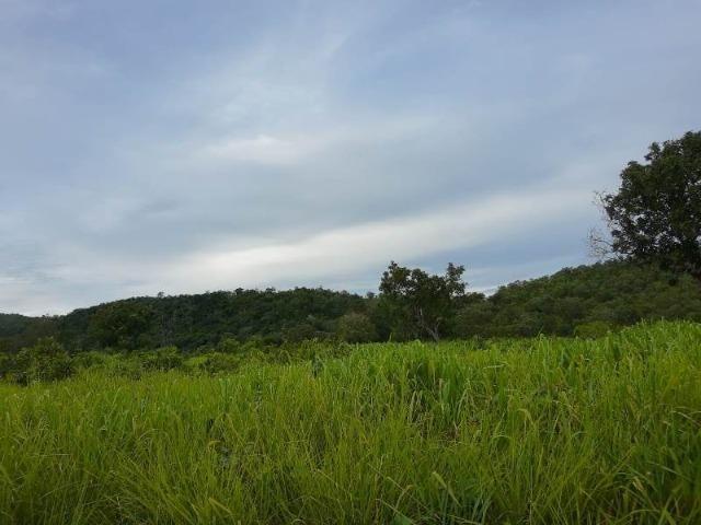 2.200 alqs Solo Argiloso Região De Chuva Palmeirópolis TO - Foto 8