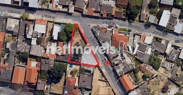 Terreno à venda em São josé, Belo horizonte cod:824376 - Foto 3