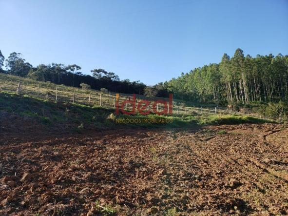 Sítio à venda, 8 quartos, 5 vagas, Zona rural - Viçosa/MG - Foto 19