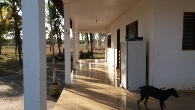 Fazenda 1.200 hectares á 20 km de Cuiabá - Foto 16