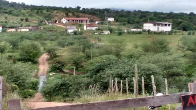 Ótima fazenda pitombeira em vertentes, com 161 hectares