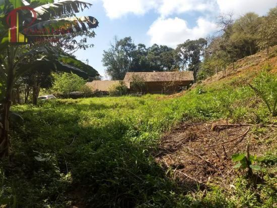 Sítio à venda em Ribeirão souto, Pomerode cod:1875 - Foto 12