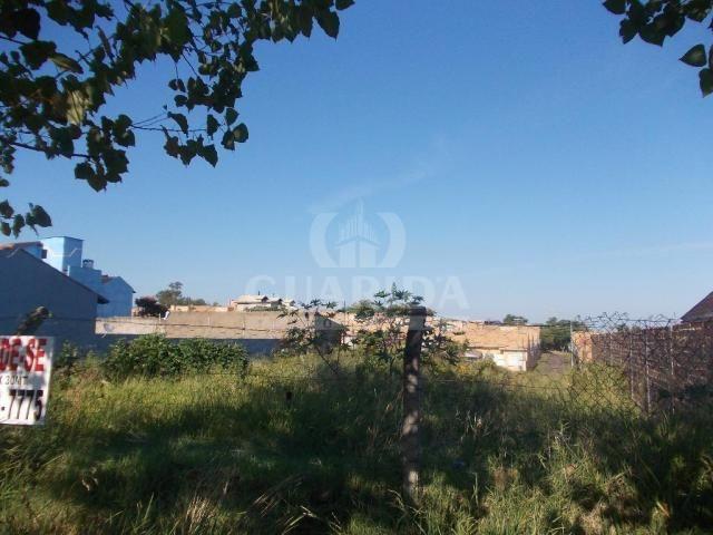 Terreno à venda em Protásio alves, Porto alegre cod:64566 - Foto 2
