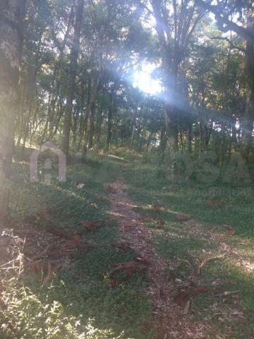 Terreno à venda em Ana rech, Caxias do sul cod:905 - Foto 6