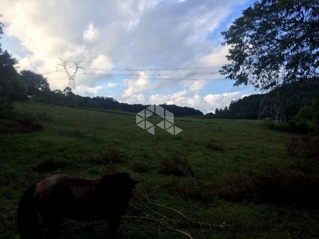 Chácara à venda em São luiz de castro, Boa vista do sul cod:9904527 - Foto 18