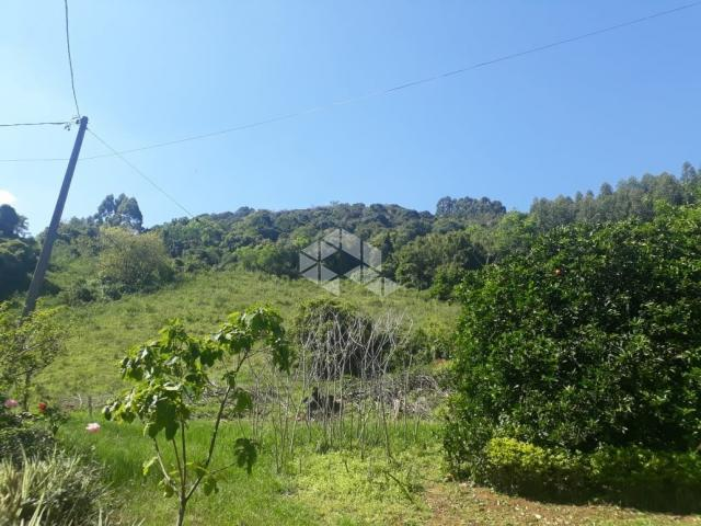 Chácara à venda em São luiz de castro, Boa vista do sul cod:9912945 - Foto 8