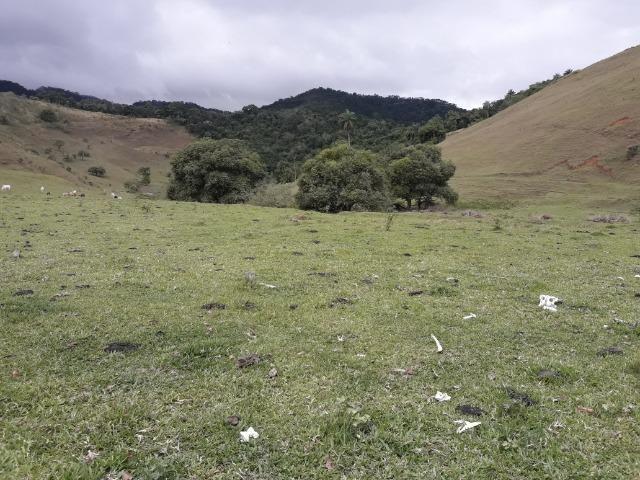 Jordão Corretores - Terrenos no centro do Guapiaçu - Foto 2