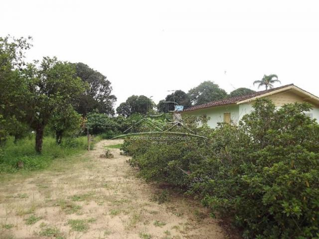 Terreno à venda em Ingleses, Florianópolis cod:394 - Foto 18