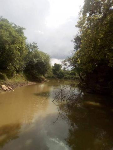 754 há em Barras Piauí - Foto 6