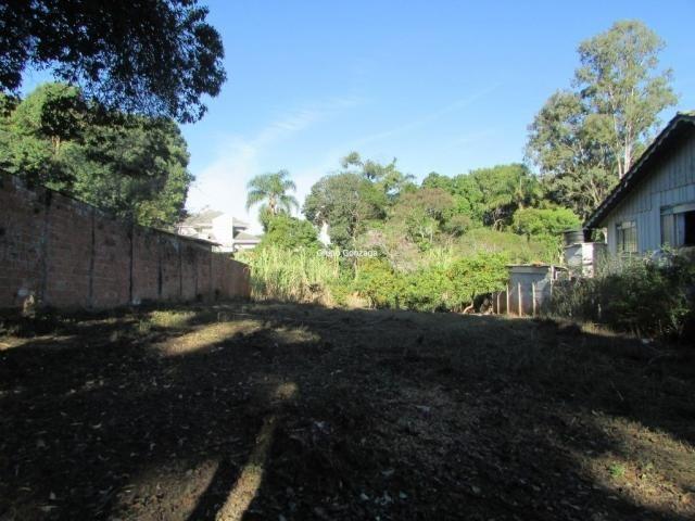 Terreno à venda em São lourenço, Curitiba cod:555 - Foto 3