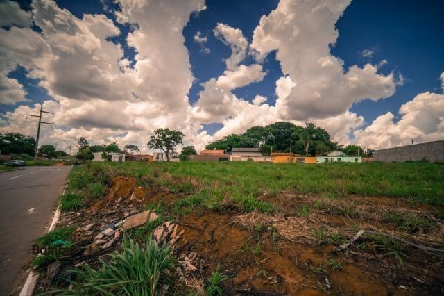 Terreno para alugar em Cardoso, Aparecida de goiânia cod:60208072 - Foto 9