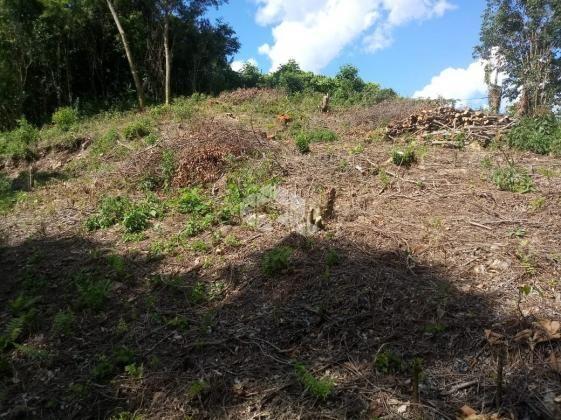 Terreno à venda em Vale dos vinhedos, Bento gonçalves cod:9889732 - Foto 17