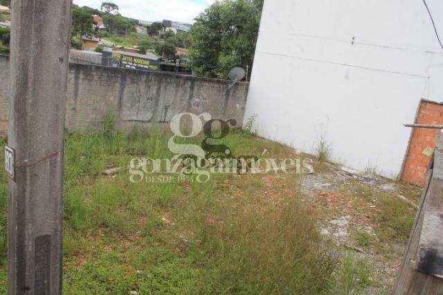 Terreno para alugar em Tingui, Curitiba cod:14394001 - Foto 3