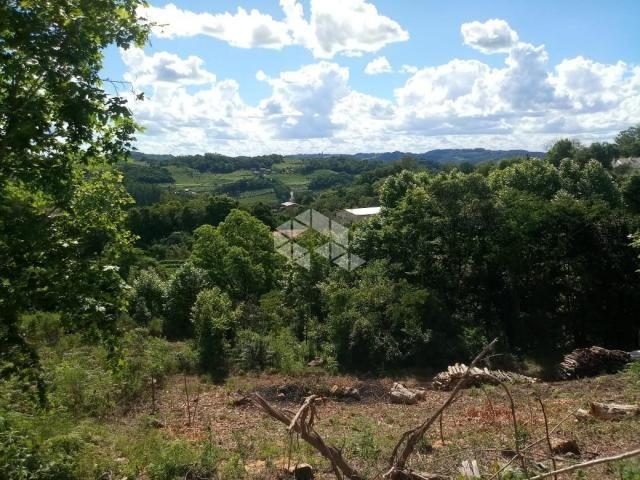 Terreno à venda em Vale dos vinhedos, Bento gonçalves cod:9889732 - Foto 6
