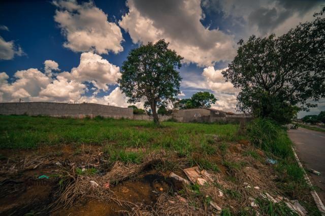 Terreno para alugar em Cardoso, Aparecida de goiânia cod:60208072 - Foto 8