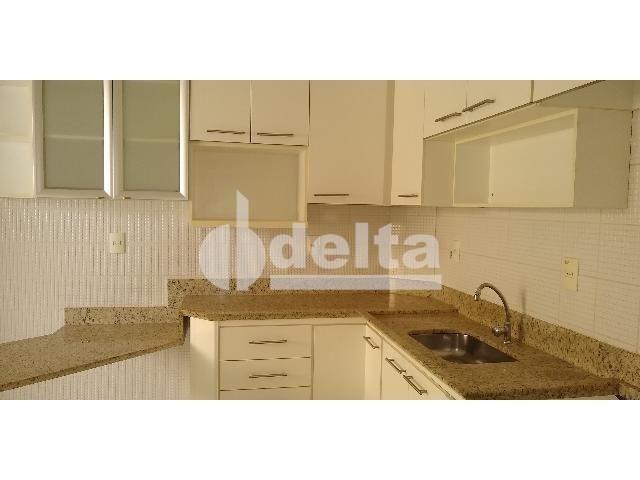 Apartamento para alugar com 3 dormitórios em Saraiva, Uberlândia cod:605513 - Foto 11