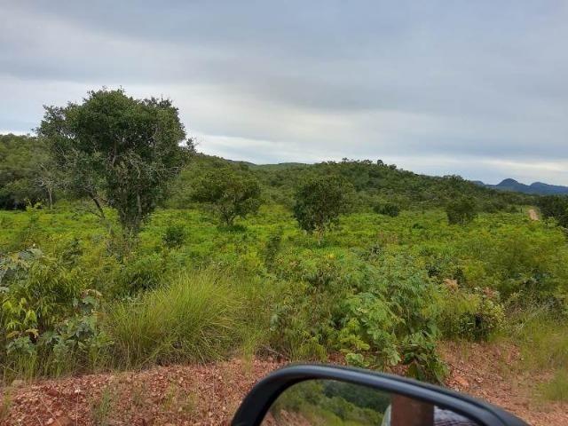 2.200 alqs Solo Argiloso Região De Chuva Palmeirópolis TO - Foto 15