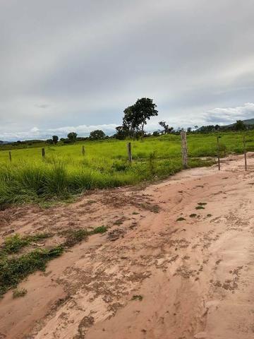 2.200 alqs Solo Argiloso Região De Chuva Palmeirópolis TO - Foto 11