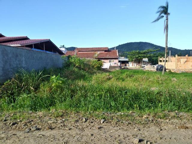 Excelente terreno na Praia de Zimbros / Bombinhas SC - 275 m2 - Foto 3