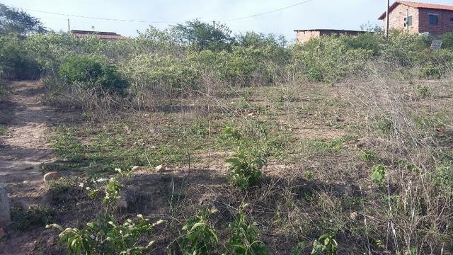 Um terreno no Loteamento Fazenda Riacho do Mel - Foto 6