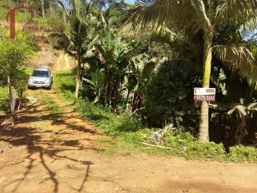 Sítio à venda em Ribeirão souto, Pomerode cod:1875 - Foto 2