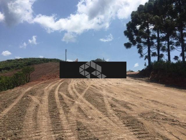 Terreno à venda em Faria lemos, Bento gonçalves cod:9903238 - Foto 8
