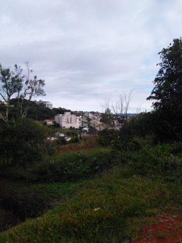 Terreno à venda em São francisco, Garibaldi cod:9908783 - Foto 2
