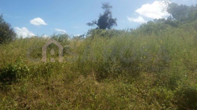 Terreno à venda em Nossa senhora das graças, Caxias do sul cod:1047 - Foto 3
